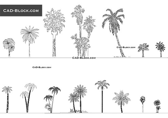 Elevation And Plan Of Trees : Trees in plan and elevation cad blocks