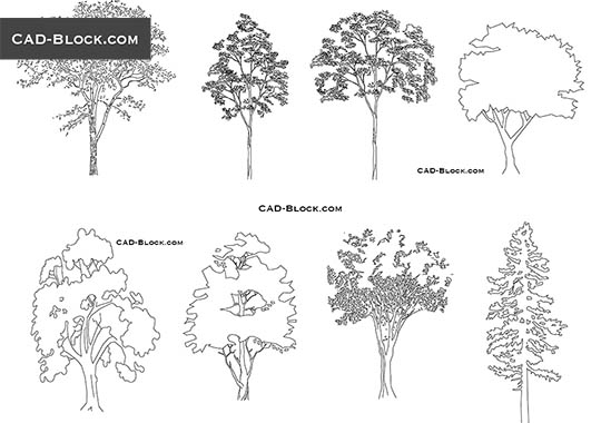Plan And Elevation Of Trees : Trees and plants free cad blocks dwg files download