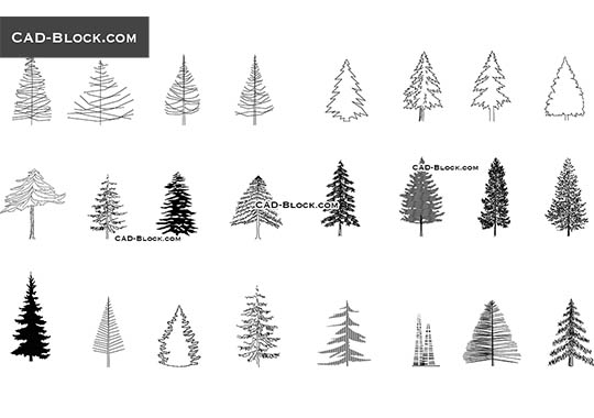 Coniferous Trees - download free CAD Block