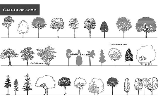 Deciduous trees - download free CAD Block