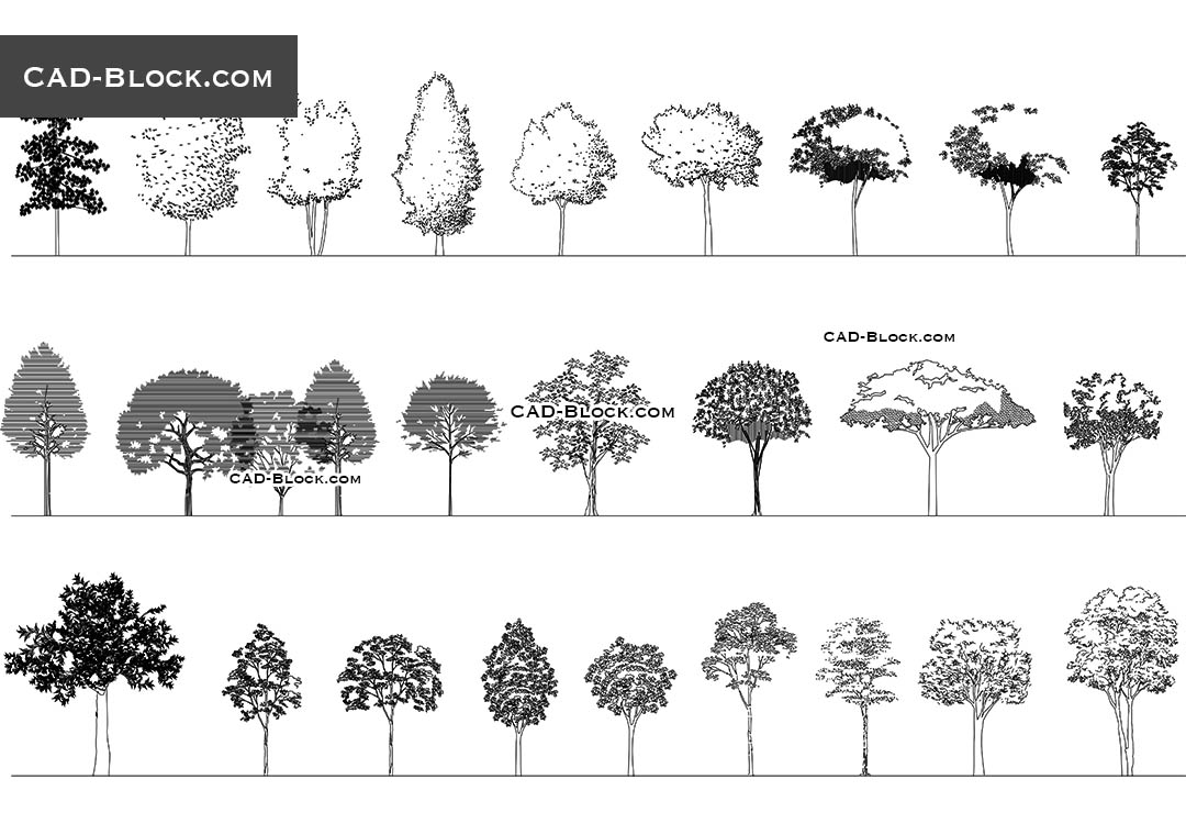 Trees in elevation CAD blocks download free 2D AutoCAD models