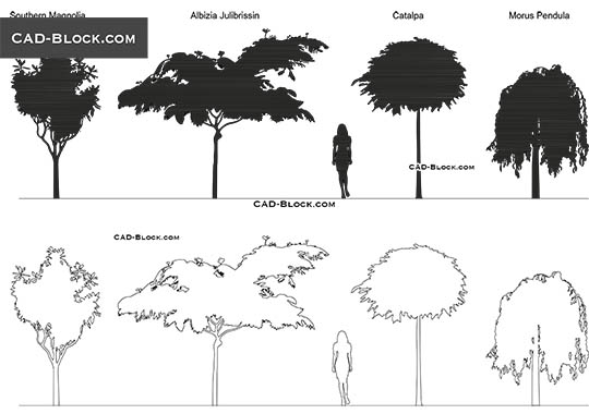 Flowering Trees buy AutoCAD Blocks