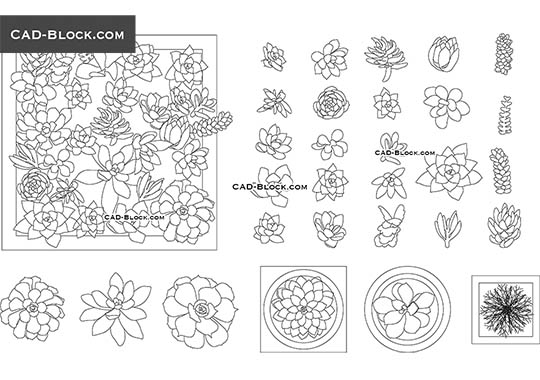 Small Ornamental Plants - download free CAD Block
